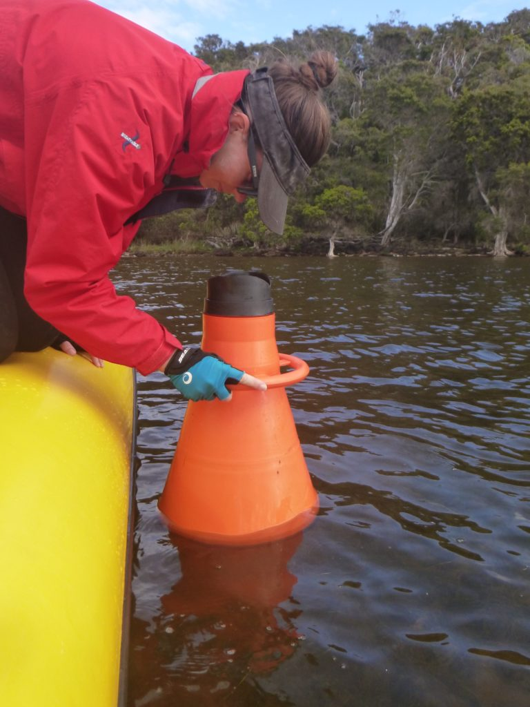 Department scientist using a viewing cone to take observations of seagrass